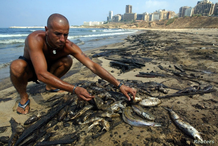 FILE - A Lebanese man collecting dead fish on a popular Beirut beach August 6, 2006. An estimated 30,000 tonnes of oil spilled into the Mediterranean Sea after Israeli war planes bombed a power plant in southern Lebanon on July 13.  REUTERS/Mohamed A...