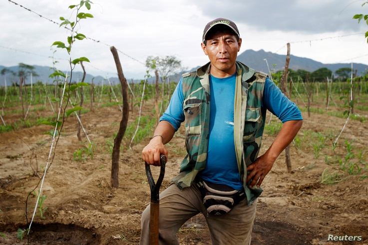 Farmer Ricardo Julca poses while irrigating his crops after a rare rain in the outskirts of Olmos in Peru's northwestern region of Lambayeque, March 14, 2013.