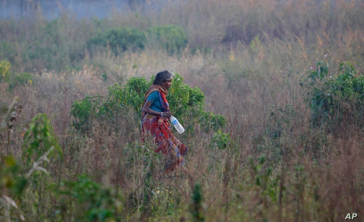 An Indian woman walks in a field after relieving herself in the open, on World Toilet Day on the outskirts of Jammu, India, Nov. 19, 2014. Some villages have public bathrooms, but many women avoid using them because they are usually in a state of dis...