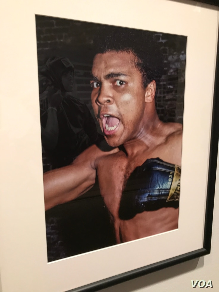 Muhammad Ali, The Mouth That Roared. (George Kalinsky/New York Historical Society)