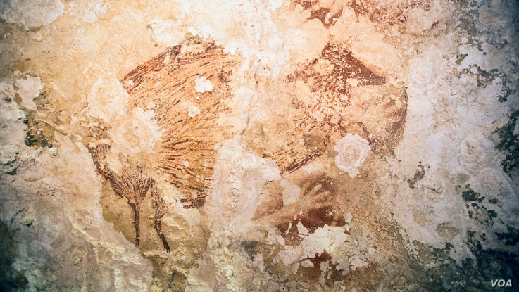 A fragmented painting of a pig-deer or babirusa (Babyrousa sp.) and hand stencil from one of the caves in Sulawesi, Indonesia. (Kinez Riza)