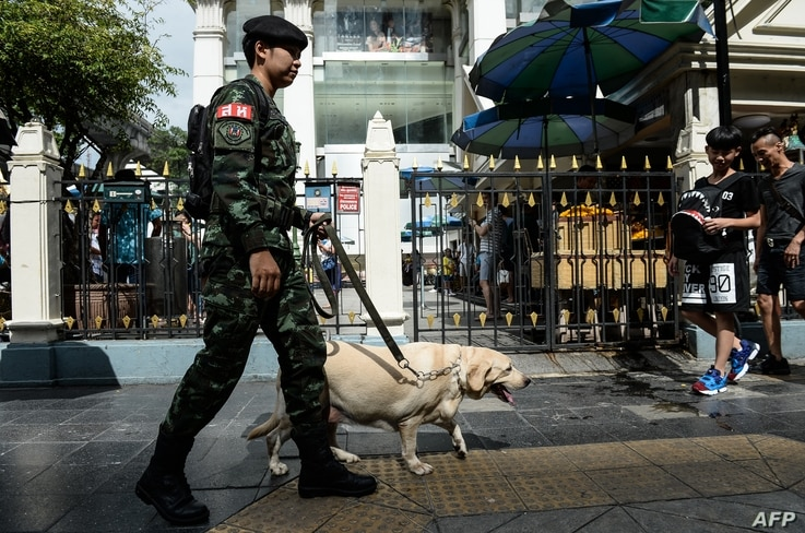 A Thai soldier with a sniffer dog walks near Erawan Shrine, a popular tourist destination that was the site of a bomb attack almost one year ago, in Bangkok on August 12, 2016.