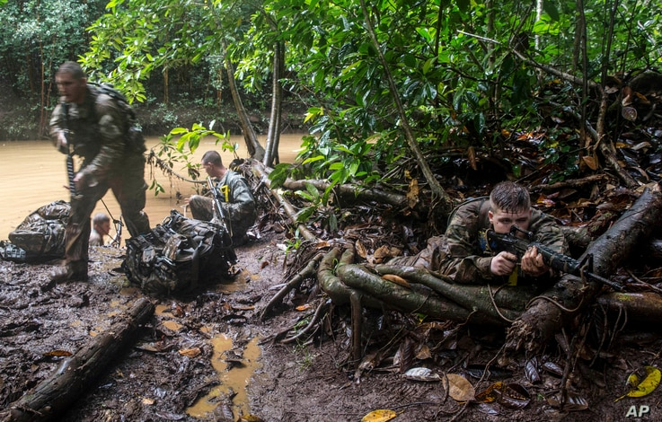 Soldiers from the U.S. Army's 25th Infantry Division 1st Stryker Brigade Combat Team participate in jungle warfare training at Schofield Barracks, Hawaii, March 1, 2017.