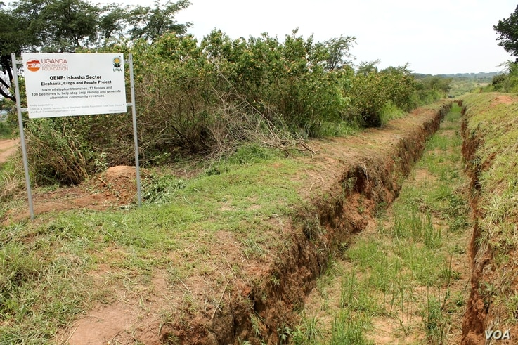 Traditional elephant control involves digging ditches, though elephants have been known to fill them in with dirt, September 28, 2012. (H. Heuler/VOA)