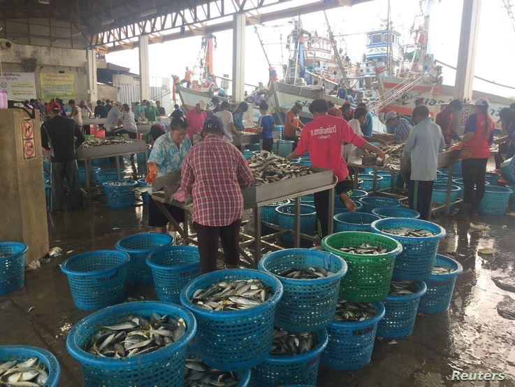 Migrant workers sort fish and seafood at a port in Samut Sakhon, Thailand, March 25, 2018.