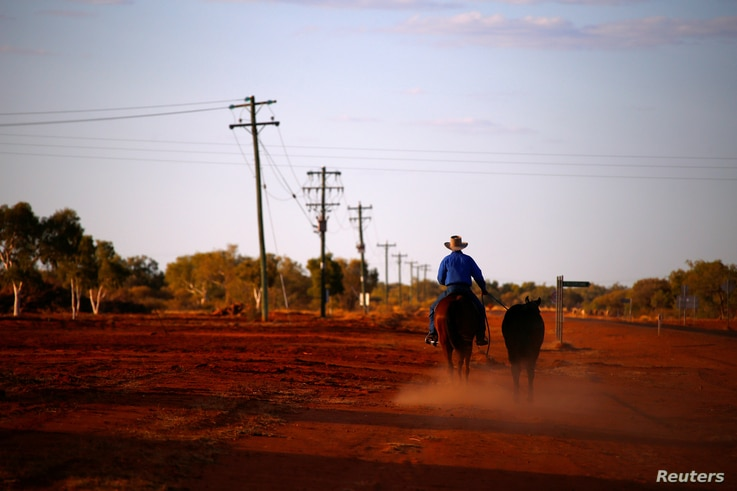 A stockman rides his horse as he leads another down a road toward the cattle yards in the outback town of Windorah, Queensland, located south of Stonehenge, in Australia, Aug. 11, 2017.