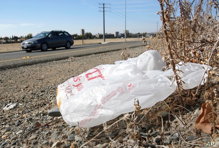 FILE - A plastic shopping bag is litters the roadside.