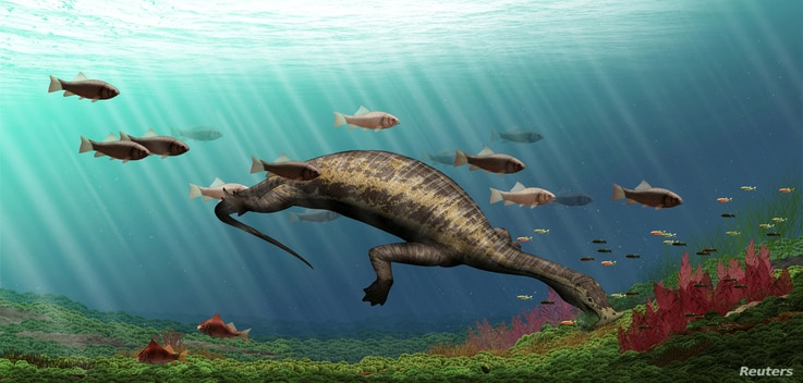 """Life restoration of Atopodentatus (the """"hammerhead"""") is shown in this image released May 6, 2016. (Courtesy: Y. Chen/IVPP)"""
