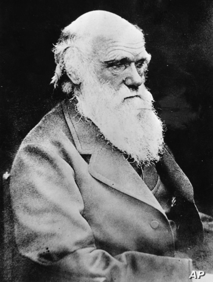 Portrait of British scientist Charles Robert Darwin, founder of the theory for the evolution of life. Born Feb. 12, 1809, and died April 19, 1882. Photo was made shortly before his death.