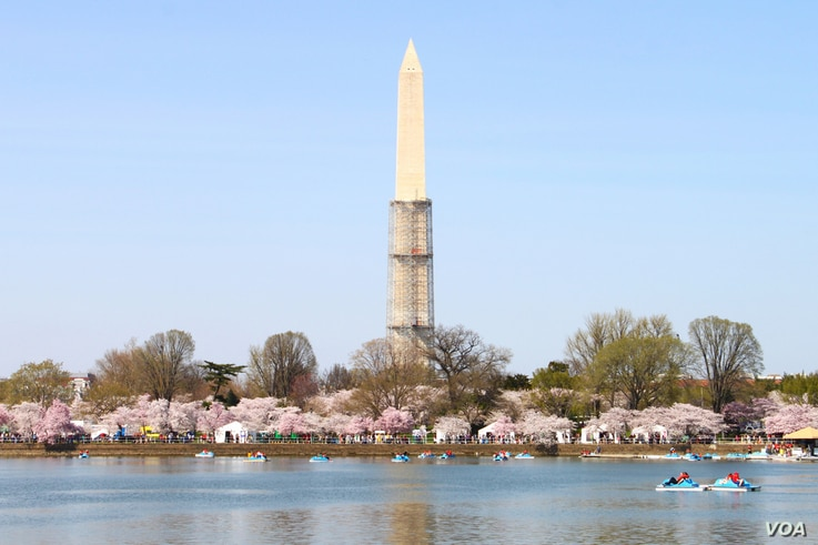 The Washington Monument shown with partial scaffolding around its base while repairs are being done as a result of an August, 23, 2011 earthquake in the region, Washington, DC, April 9, 2013. (Brian Allen/VOA)