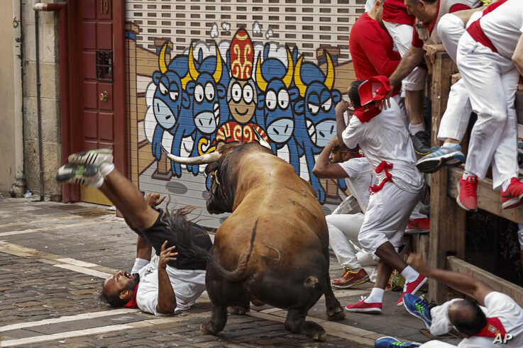 A reveler is gored by a Cebada Gago's ranch fighting bull during the running of the bulls in Pamplona, Spain, July 8, 2016.