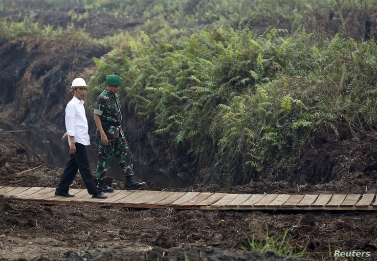 FILE - Indonesian President Joko Widodo (L) inspects a canal in Pulang Pisau, Central Kalimantan, Oct. 31, 2015.