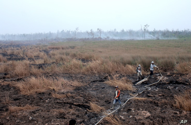 FILE - Workers spray water to contain a wildfire in peatland in Pedamaran, South Sumatra, Indonesia, Oct. 27, 2015.