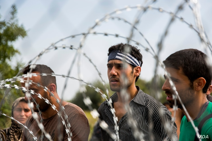 Confusion rampant among migrants who got to the Hungarian border from Serbia, only to find a four meter high fence blocking their way, Sept. 15, 2015. (A. Tanzeem/VOA)