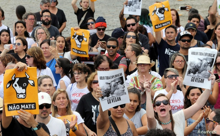 NGO and animal protection activists attend a protest against the export of live animals, in the port of Santos, Brazil, Feb. 4, 2018.