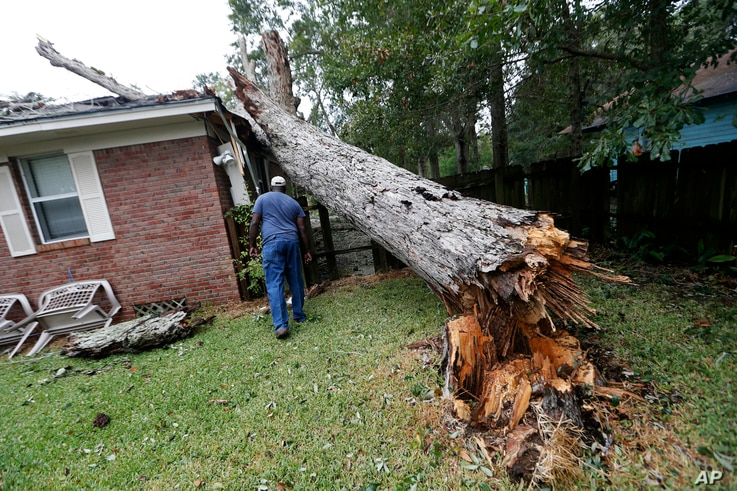 Lawrence Carriere checks on the home of his neighbor after a tree fell on it and crashed through the roof, in Biloxi, Miss., in the aftermath of Hurricane Nate, Oct. 8, 2017.