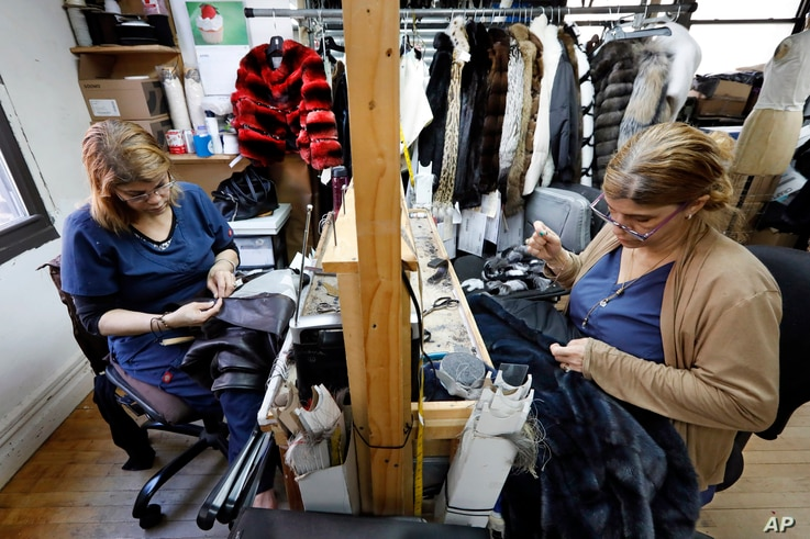 In this April 10, 2019, photo, seamstresses Sonia Genao, left, and Juana Rodrize work on coats at Pologeorgis Furs in New York.