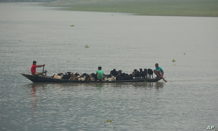 Locals move their goats in a boat to safer ground  after Cyclone Fani hit the coastal eastern state of Odisha, on the river Brahmaputra in Gauhati, India, May 3, 2019.