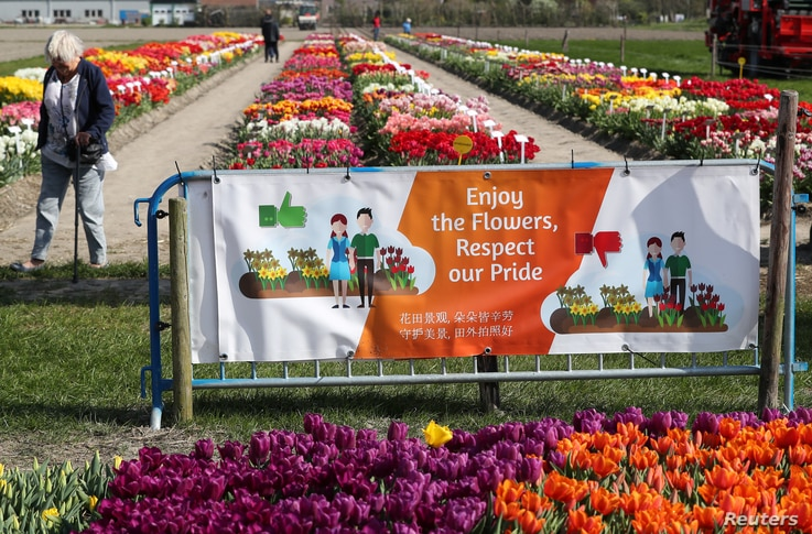 A sign is seen at the entrance of a tulips field near the city of Creil, Netherlands, April 18, 2019.