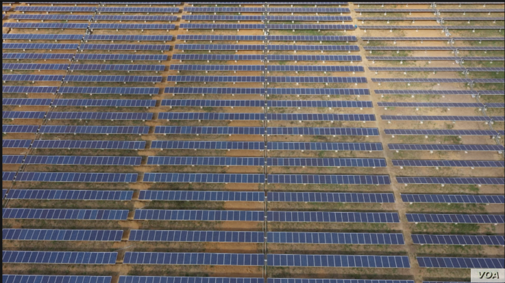 About 7,000 solar panels are seen at this power plant 50 kilometers northwest of Harare, Zimbabwe. Centralgrid, which owns the plant, says will generate 2.5 megawatts starting next month to be fed into Zimbabwe's power grid (C. Mavhunga/VOA)