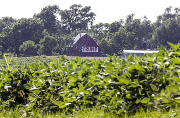 FILE - A field of soybeans is seen in front of a barn carrying a large Trump sign in rural Ashland, Neb., July 24, 2018. President Donald Trump's enthusiasm for tariffs has upended decades of Republican trade policy that favored free trade.