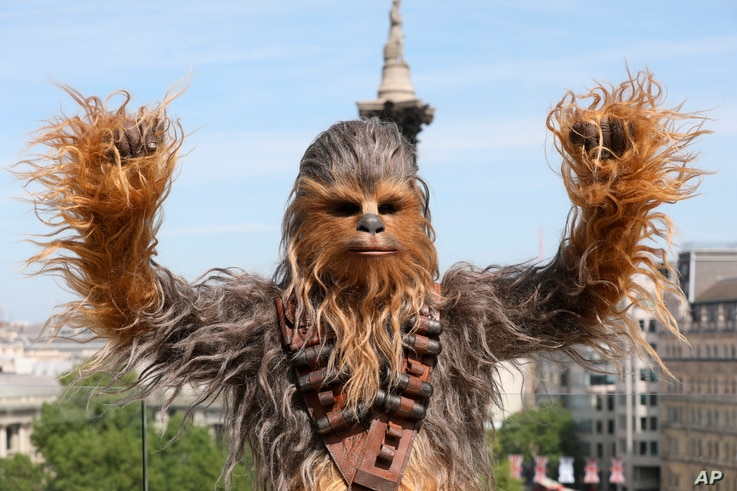A person wearing a costume of the character Chewbacca poses for photographers at the photo call of the film 'Solo: A Star Wars Story' in London, May 18, 2018.