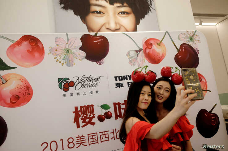 FILE - Models take a selfie during a promotional event of Northwest Cherries from the United States at a shopping mall in Shenzhen, China, July 8, 2018.
