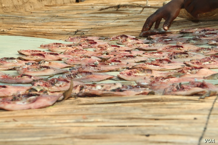 Poverty is forcing women at Lake Malawi into transactional sex when they don't have enough money to buy fish.