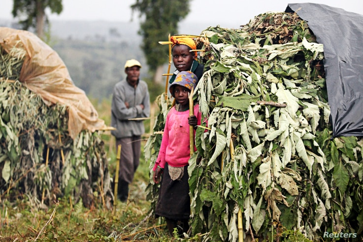 FILE - People evicted from the forest stand by shelters on the outskirts of the Mau Forest complex in the Kenyan Rift Valley, Nov. 18, 2009. Kenya's government says it is vital to relocate about 20,000 families from the Mau, a vital water catchment area.