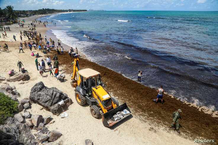 Brazilian army soldiers and residents work to remove an oil spill on Itapuama Beach in Cabo de Santo Agostinho, Pernambuco…