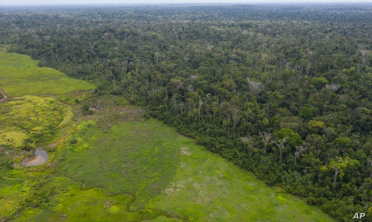 This Sept. 5, 2019 photo shows an aerial views of the lush Alto Rio Guama Indigenous Reserve saddled next to a deforested area owned by cattle ranchers, in Para state, Brazil.