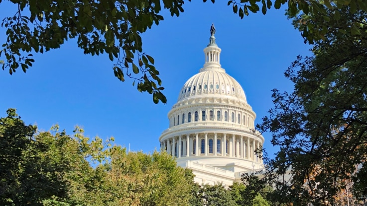The dome of the U.S. Capitol Building is seen on a bright day in Washington, U.S., Oct. 23, 2019. (Photo: Diaa Bekheet)