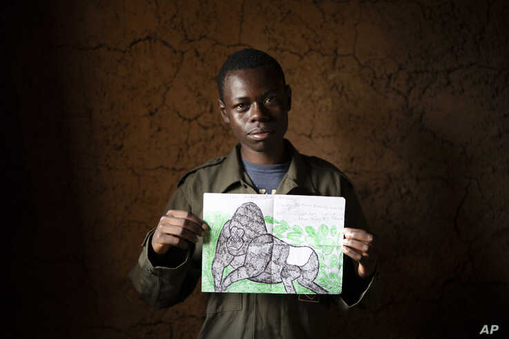 In this Sept. 5, 2019 photo, Jean Claude Masengesho, poses for a photo holding one of his many drawings of silverback gorillas…