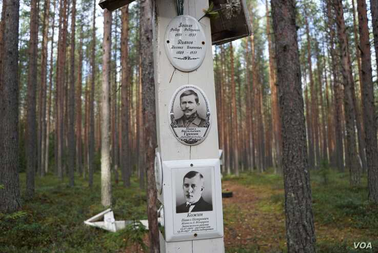 """Krasny Bor means the """"Beautiful Grove"""" and but for white wooden markers identifying pits where the killed were buried under tall swaying pine trees it would be. (J. Dettmer/VOA)"""