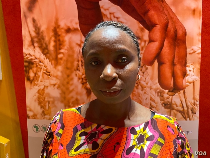 Joan Kagwanja of the United Nations Economic Commission for Africa (UNECA)'s African Land Policy Centre said in Abidjan, (November 29, 2019) the land sector in Africa is  one of the most corrupt sectors of the economy, in most countries it is rated the second after the police (Columbus Mavhunga/VOA)
