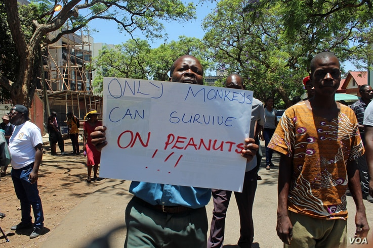 Webster Tabvemhiri is one of the demonstrators when government workers took to the streets in Harare, Zimbabwe, Nov. 6, 2019.