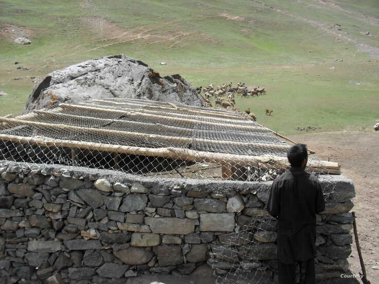 Predator-proof corrals built for villagers to protect livestock from snow leopard attacks (Courtesy: BWCDO)