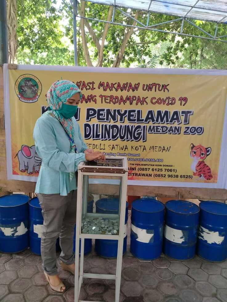 A woman donates to the Medan Zoo in North Sumatra, Indonesia, after the zoo launched a fundraiser to help feed the animals. Revenue from admission fees fell quickly as people avoided crowded public places during the COVID-19 pandemic. (Courtesy Medan Zoo)