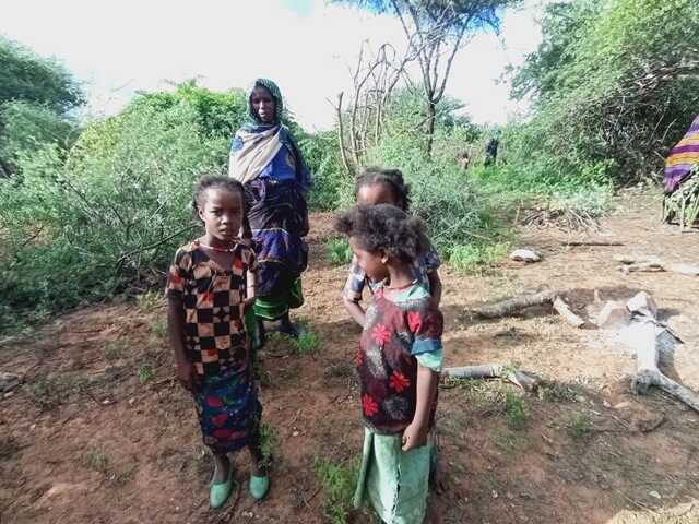Thousands of people have been displaced from Wachile in the Southern Oromia region of Ethiopia, May 5, 2020.