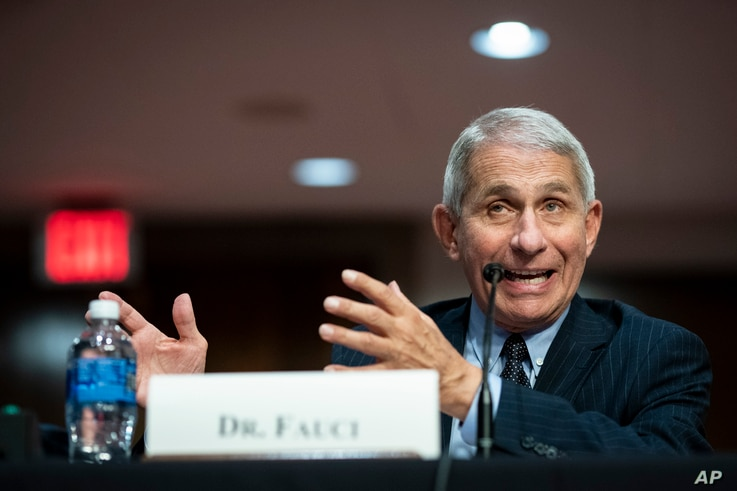 Director of the National Institute of Allergy and Infectious Diseases Dr. Anthony Fauci speaks during a Senate Health,…