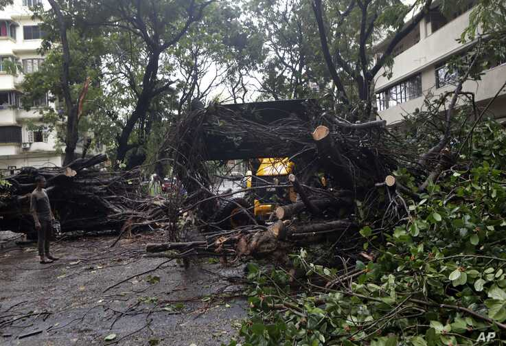 Trees uprooted because of strong winds in Mumbai, India, June 3, 2020.