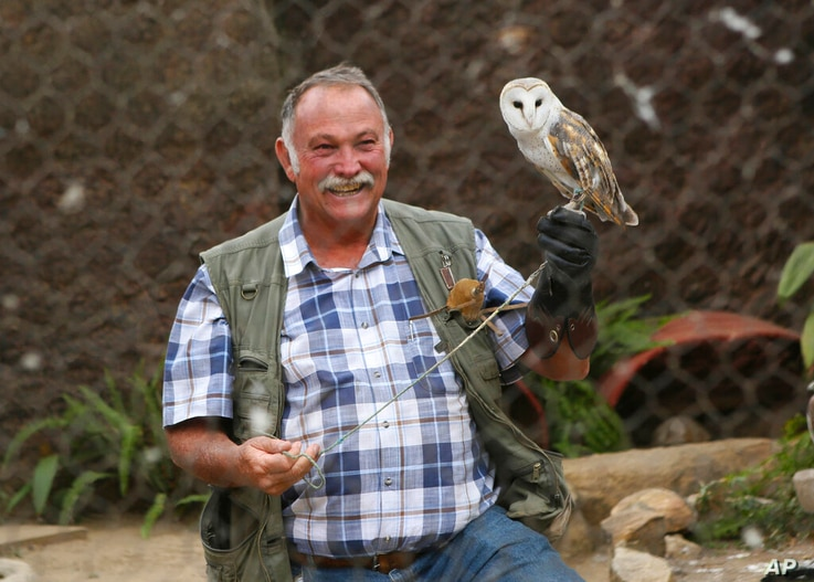 Gary Strafford, a Zimbabwean falconer, holds an owl inside one of the cages at his bird sanctuary, Kuimba Shiri, near Harare,…