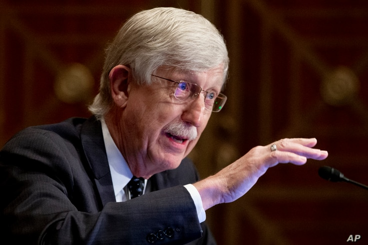 Dr. Francis Collins, Director of the National Institutes of Health, appears before a Senate Health, Education, Labor and…
