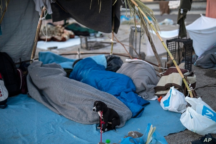 A dog sits next to migrants as they they sleep on a road leading from Moria to the capital of Mytilene, on the northeastern…