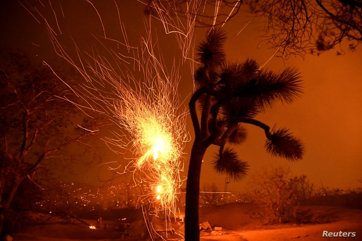 Winds blows embers from a burning tree at the Bobcat Fire in Juniper Hills, California, Sept. 19, 2020.
