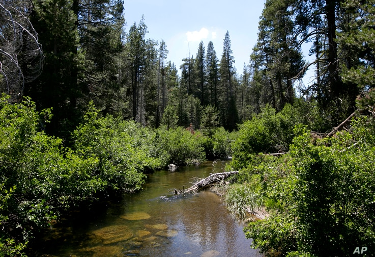 In this Tuesday, July 25, 2017 photo, the North Fork of Prosser Creek flows through the Lower Carpenter Valley near Truckee,…