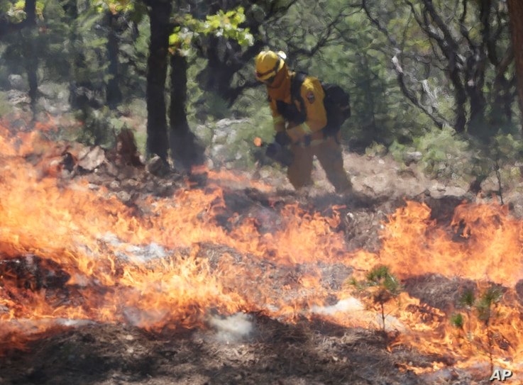 AP10ThingsToSee - A firefighter sets a controlled burn with a drip torch while fighting the King Fire on Tuesday, Sept. 23,…