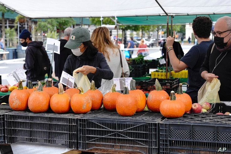 People buy pumpkins at an outdoor market in Union Square Park, New York, Oct. 5, 2020.