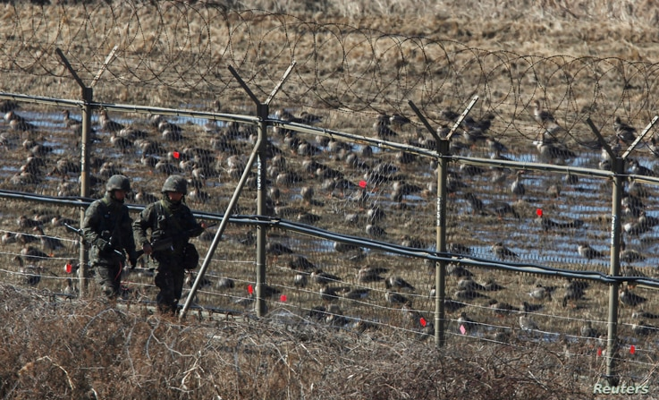 South Korean soldiers walk past birds as they patrol along a barbed-wire fence near the demilitarized zone (DMZ), which…