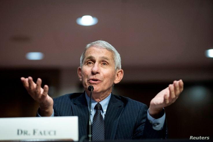 FILE PHOTO: Dr. Anthony Fauci, director of the National Institute of Allergy and Infectious Diseases, speaks during a Senate…